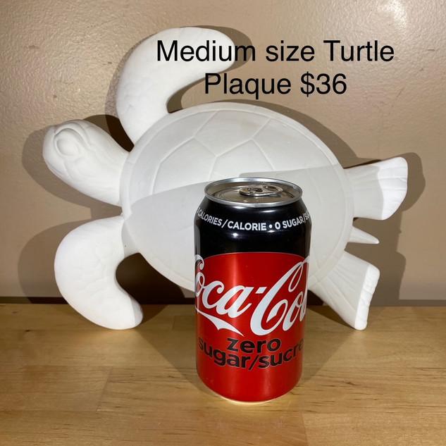 medium turtle plaque.jpg