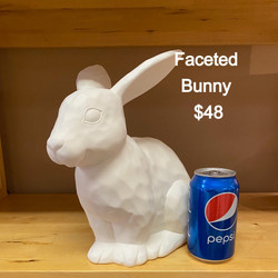 ffaceted bunny