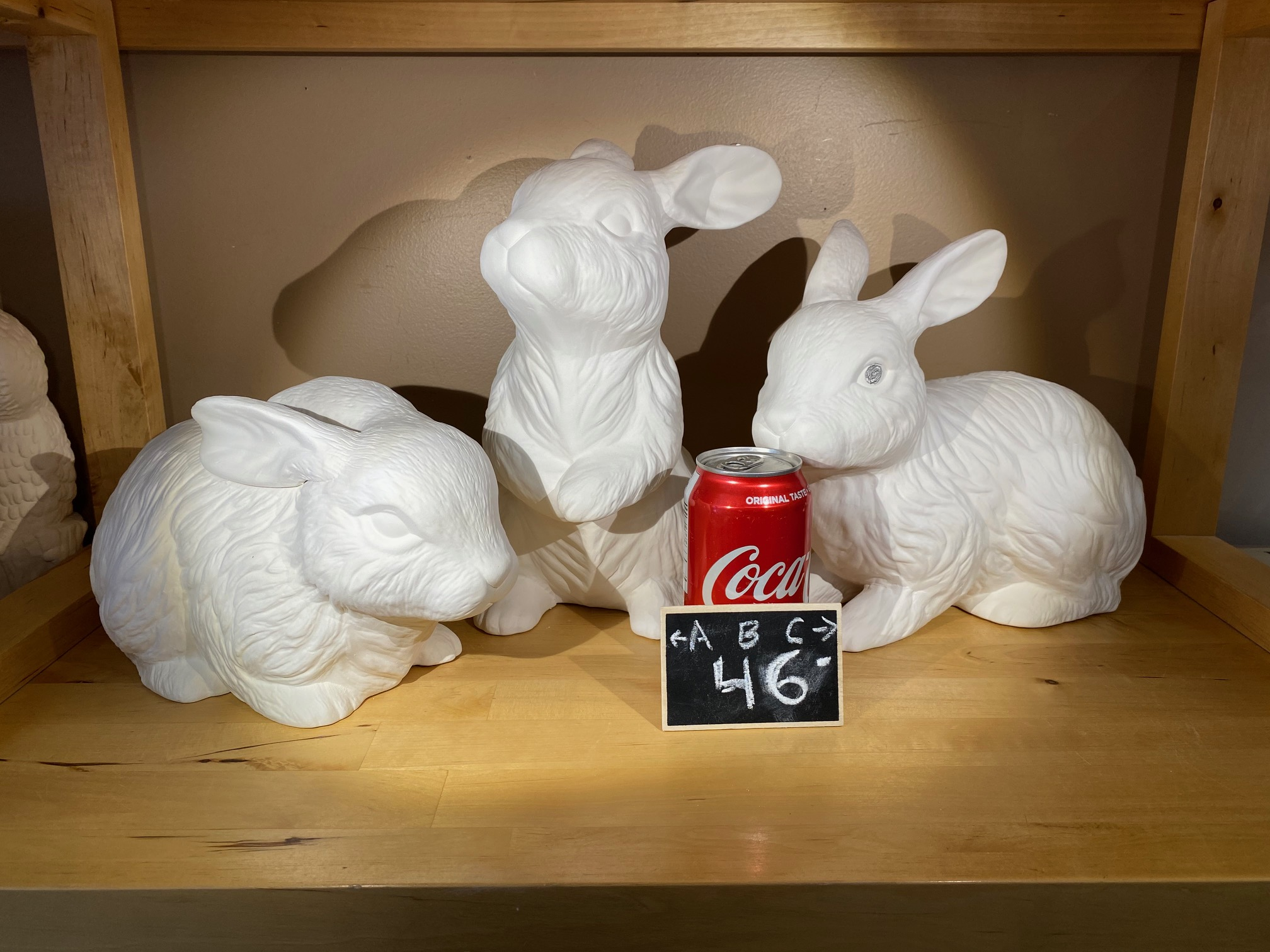 large bunnies
