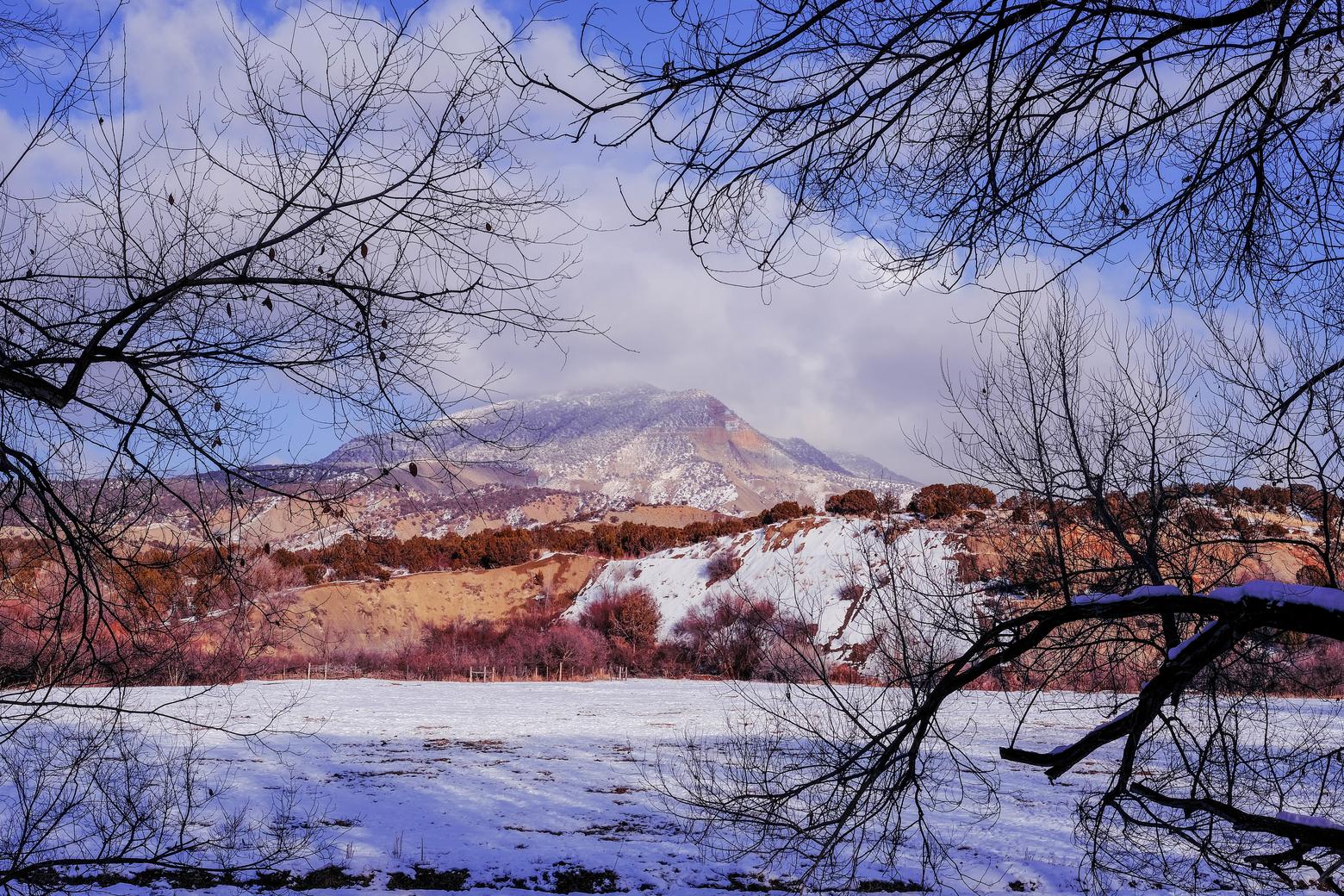 hillsideview