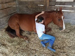 Sleeping Girl and Horse