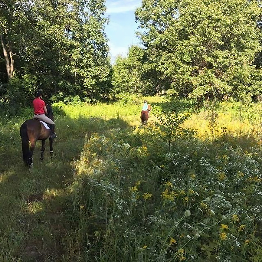 Horse Camp - August