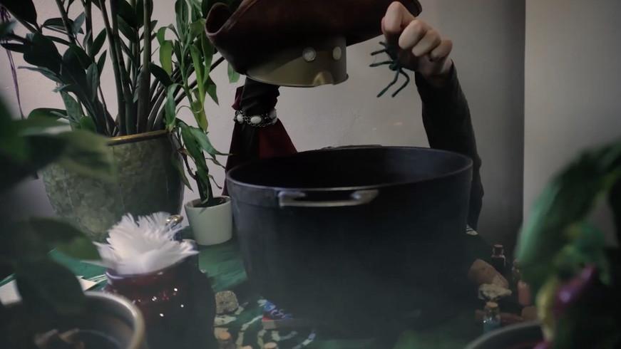 Trylledrikken - Anima Mundi Småklipp.jpg