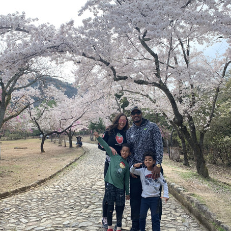 The Perfect Overnight Trip Itinerary to Kyoto with Kids!