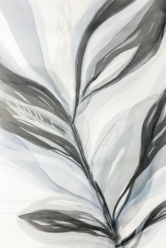 Silver Palms II
