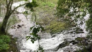 rio Alva com menos 70% do caudal