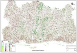 ドローン空撮から樹冠樹高平面図の作成