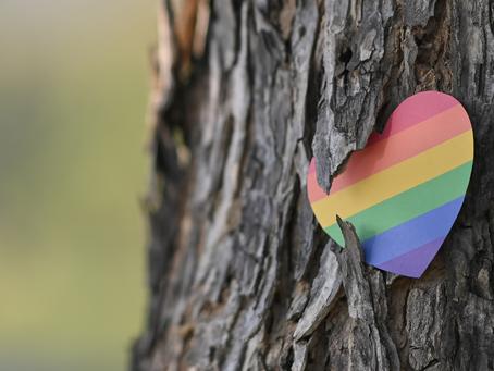 LGBTQIA+ Inclusivity and Violence Prevention Education