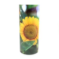 Sunflower Scattering Tube