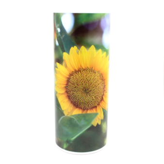 Sunflower Scattering Tube