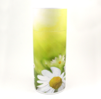 Daisies Scattering Tube