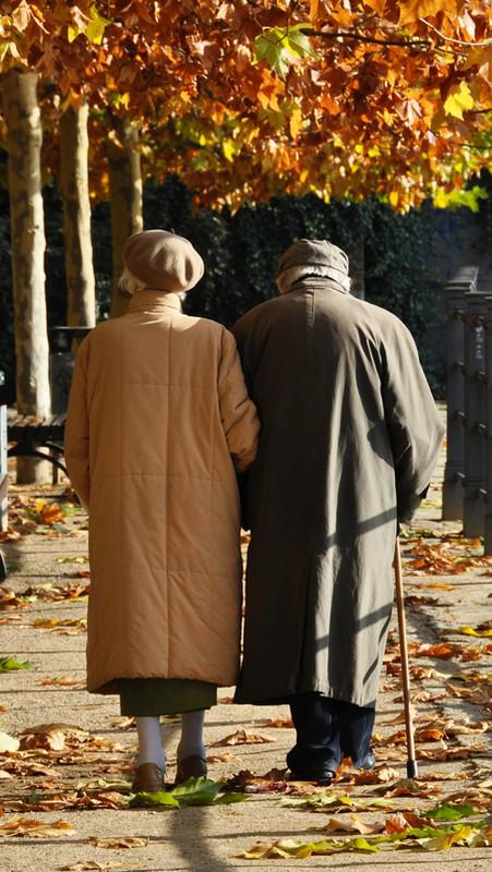 Old couple walking along an autumn path