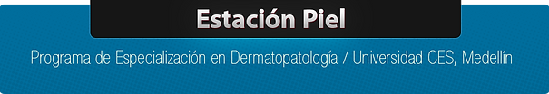 Cabezote_Estacion_Piel.png