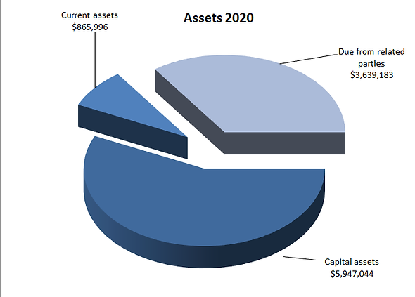2020-Assets.png