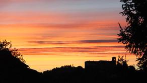 La visione di Sri Aurobindo