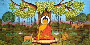 La Meditazione Vipassana e la Psicobiologia di Wilhelm Reich