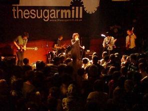 MTF_Sugarmill_2008_Image 4.jpg