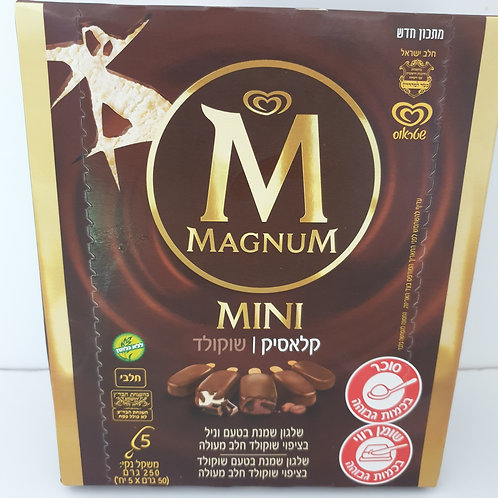 Magnum Mini Classic & Chocolate 5-Pack