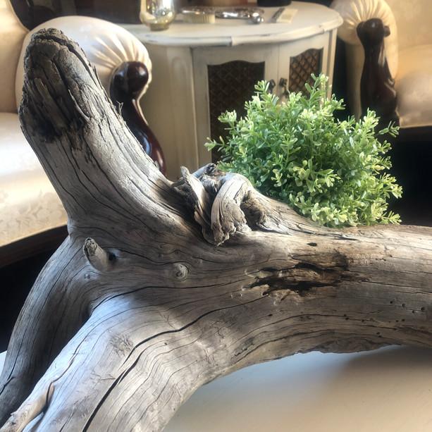 Driftwood Piece