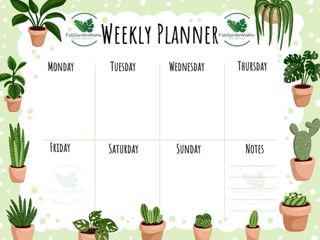 Weekly Planner for Your Houseplants
