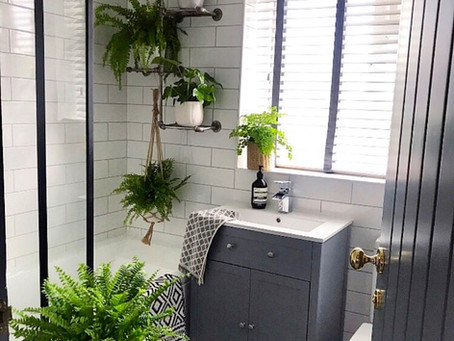 Room by Room Plant Decoration: Bathroom