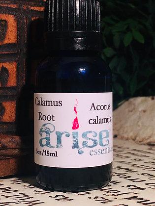 Calamus Root Essential Oil