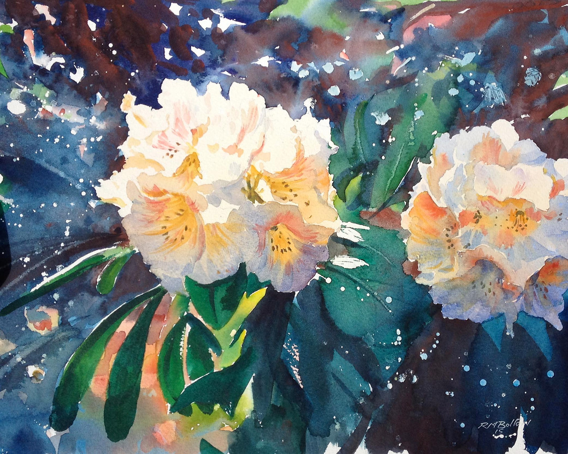 Rhododendrons IV