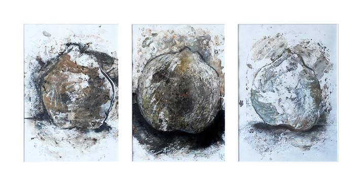 Trio of Quinces
