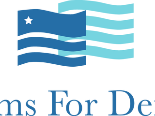 Fems For Dems Endorses Andy Levin For Congress