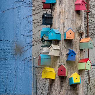Birdhouses multicoloured.jpg