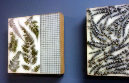 Encaustic plants.jpg