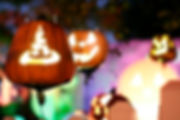 Halloween dec 6.jpg