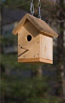 Birdhouses wood.jpg