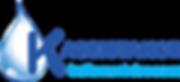 logo VD4.png