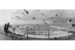 Oostende Panorama (5)