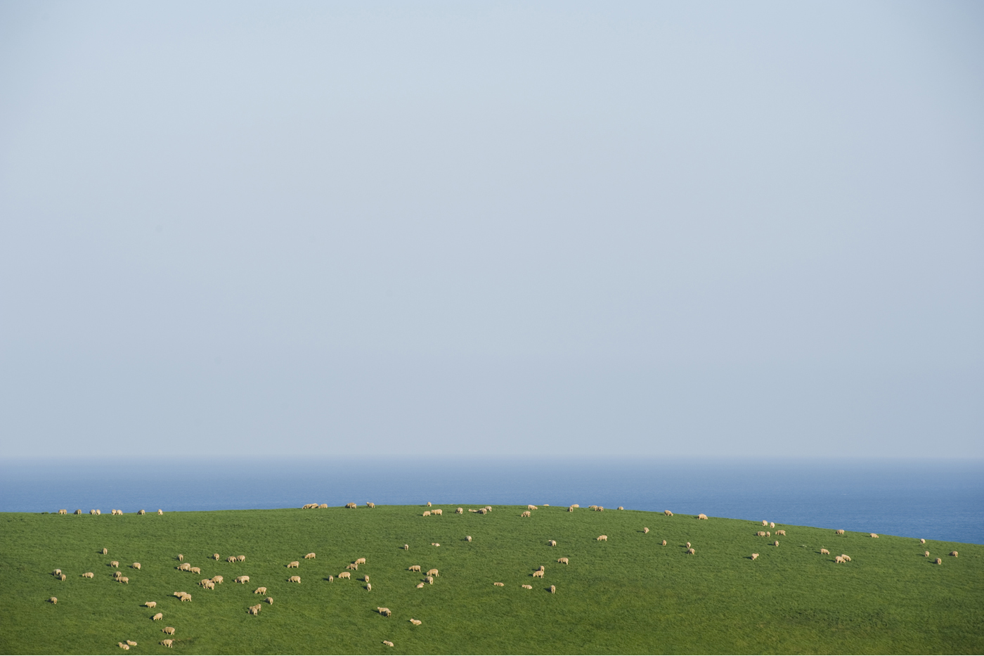 Cornwall (6)
