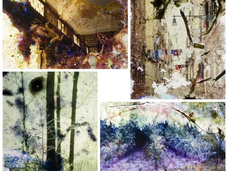 Te gast: Daniel Manzi 'Paysages retrouvés' 2 NOV - 29 DEC 2013 >> scroll for English version