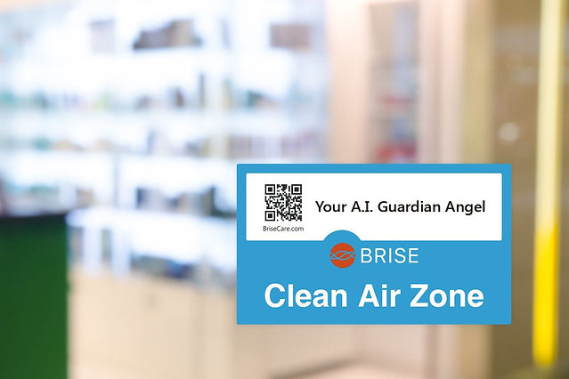 BRISE CLEAN AIR ZONE.jpg