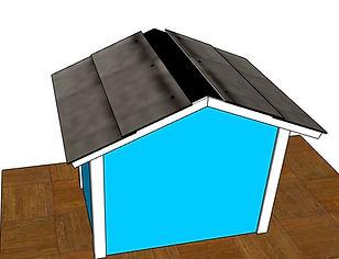 Roof 2a.jpg