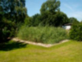 AQUANT-Pflanzenkläranlage nach dem Einbau im 2. Betriebsjahr, vollbiologische Kläranlage und gestalterisches Element im Garten