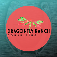 Dragonfly ranch consulting horseshoe log