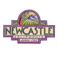 newcastle-community-days.jpg