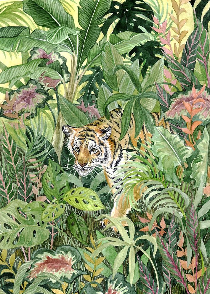 Tiger web.jpg
