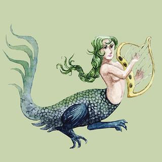 Harp mermaid.jpg