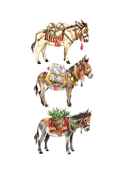 Nepal Donkeys .jpg