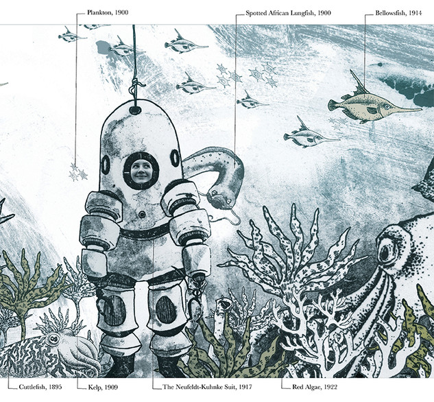 The Story of the Ocean - Book Project