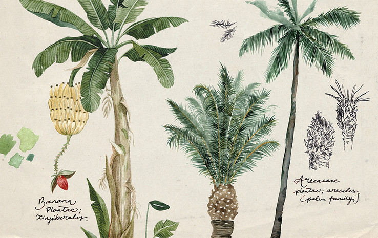 palm trees.annatromop.jpg