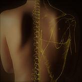 ostéopathie énergétique