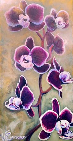 Seven Orchids