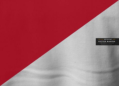collar-t-shirts-size-chart-online.jpg